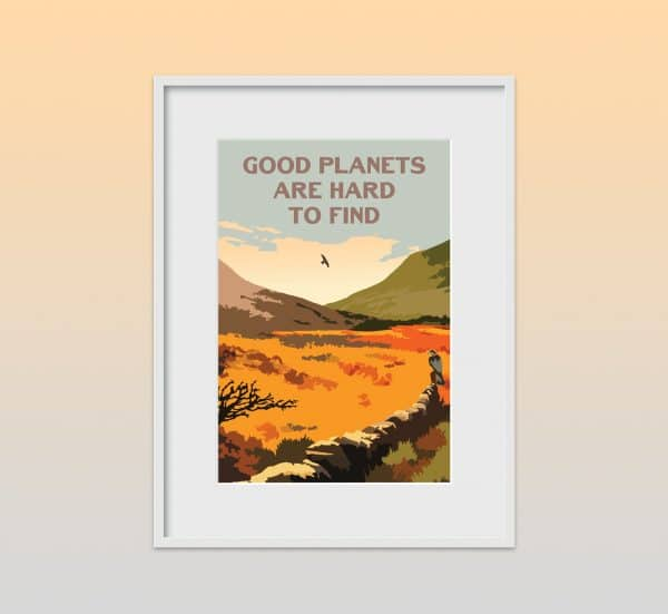 good planets are hard to find poster print