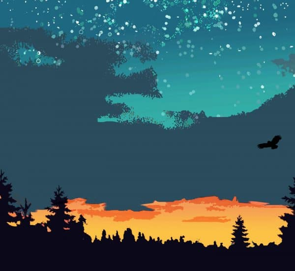 the night sky poster print