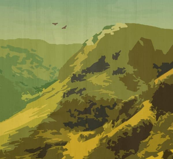 explore nature postcard print