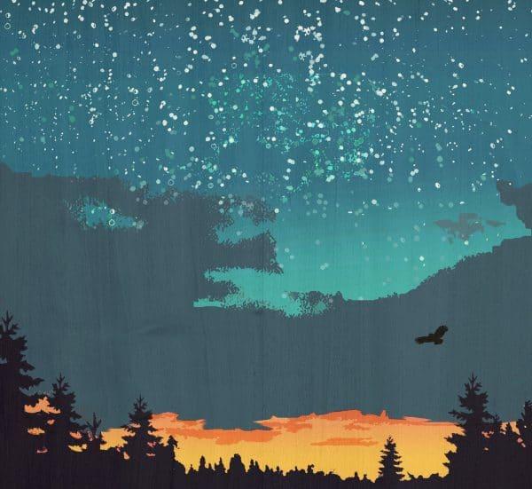 The night sky postcard print